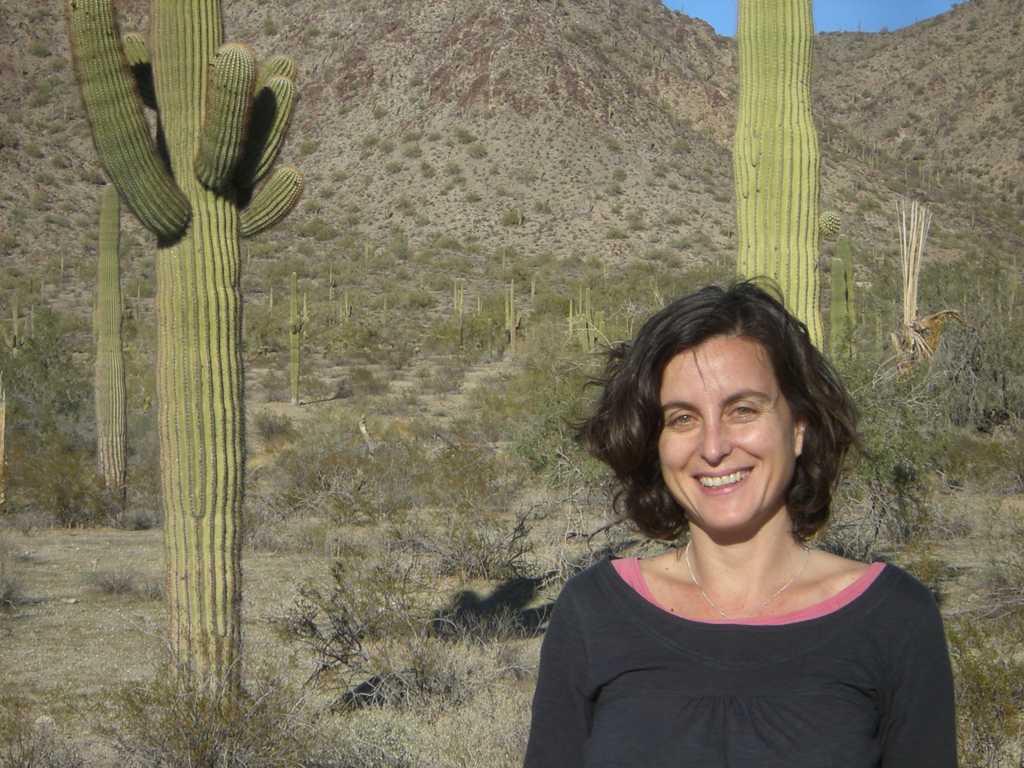 Desierto de Sonora